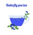 tea blou vector image vector image