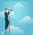 business vision ladder vector image