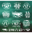 Scuba diving emblems and blurred background vector image