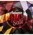 Autumn sale typography on triangular background in vector image vector image