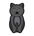 cat cartoon pet icon image vector image