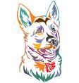 colorful decorative portrait of puppy german vector image vector image