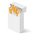 Pack of cigarettes vector image vector image