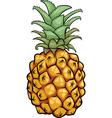 Pineapple fruit cartoon