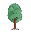 tree on white background cute cartoon vector image