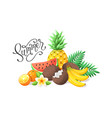 tropical fruit collection vector image