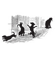 cat and dancing dog histories for sales vintage vector image vector image