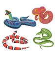 colorful tropical exotic snakes isolated vector image vector image