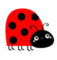 lady bug ladybird insect icon side view cute vector image vector image