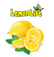 vegetable lemon life white background image vector image