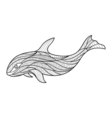 color book whale vector image vector image