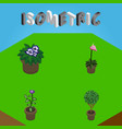isometric flower set of tree flower grower and vector image vector image