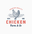 premium quality chicken farm and company abstract vector image