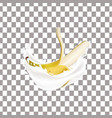 realistic banana and milk splash vector image