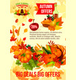 thanksgiving sale banner of autumn discount offer vector image vector image