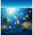 Underwater scene with fish and seaweeds vector image vector image