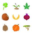 wild plants icons set cartoon style vector image vector image