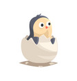 adorable newborn penguin hatching from egg vector image vector image