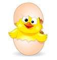 cute chick was born vector image