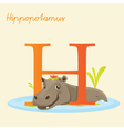 H for hippo vector | Price: 1 Credit (USD $1)