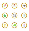 netherlands products icons set cartoon style vector image vector image