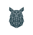 polygonal owl geometric pattern with wild bird vector image vector image