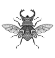 Sketch Decorative Bug vector image vector image