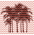 Silhouettes of palm trees on a pink background vector image