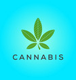 cannabis leaf line logo design inspiration vector image