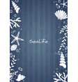 sealife and bubble water on wooden background