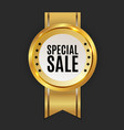 special sale golden label sign vector image