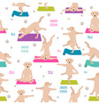 yoga dogs poses and exercises labrador retriever vector image vector image