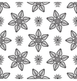 paisley drop and line flower pattern vector image