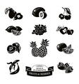Icon set of fruits and berries vector image