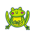 colorful green amphibian vector image