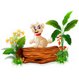 cute baby dog posing on tree trunk vector image vector image