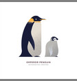 emperor penguin animal cartoon isolated with baby vector image