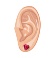 Human ear and earring vector image vector image