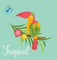 image of bright tropical bird on palm branch vector image