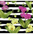 seamless tropical pattern with orchid flowers vector image vector image