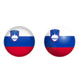 slovenia flag under 3d dome button and on glossy vector image vector image