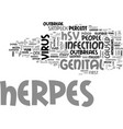 what is herpes text word cloud concept vector image vector image