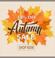 autumn leaves sale sign vector image vector image
