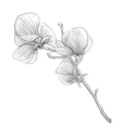 black and white twig blossoming magnolia tree vector image