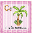 Letter C vector image vector image