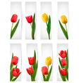 Set of banners with pink flower vector image vector image
