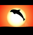 silhouette of a jumping dolphin against a sunset vector image