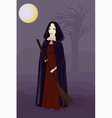 witch in the night vector image
