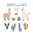 cute cartoon alpacas and cacti design elements vector image