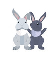cute rabbits cartoon vector image